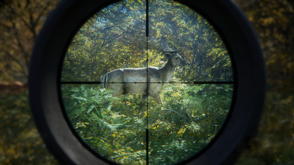 theHunter: Call of the Wild - 2019 Edition kaufen